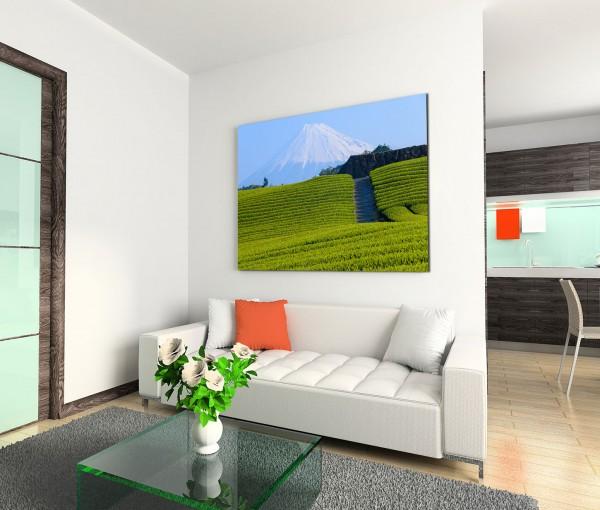 120x80cm Wandbild Fuji Berg Vulkan Wiesen Feld