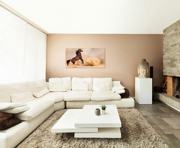120x60cm Pferd Wüste Sandsturm Arabien