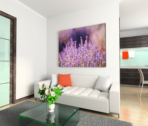 120x80cm Wandbild Lavendel Wiese Feld Sommer