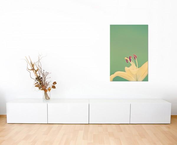 120x60cm Lilie Blüte Blume