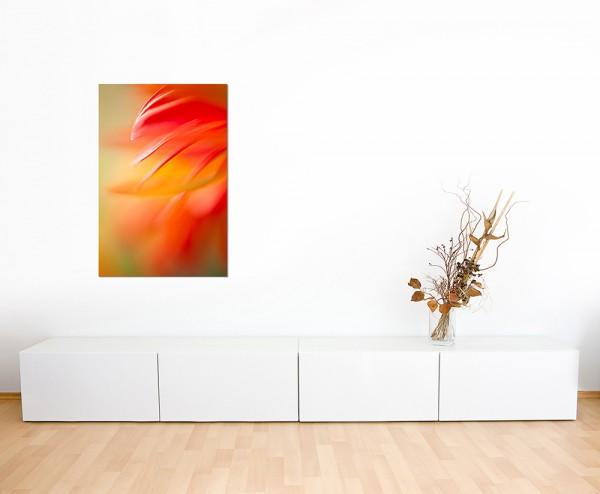 120x60cm Blüte Blume abstrakt makro