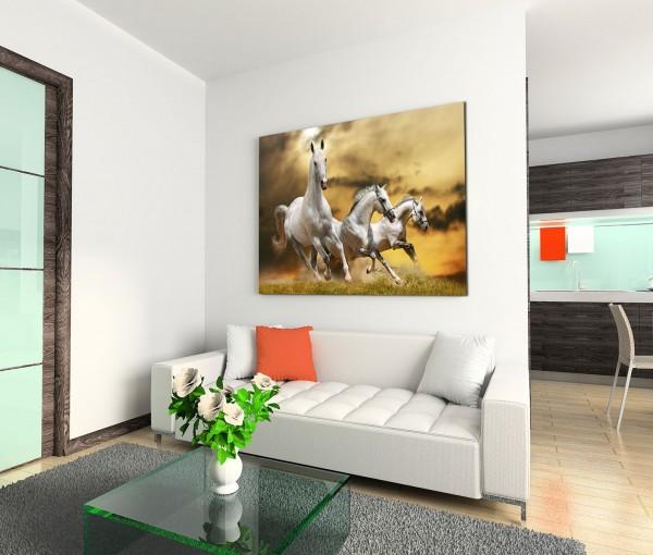 120x80cm Wandbild Pferde Wiese Wolken Abendrot