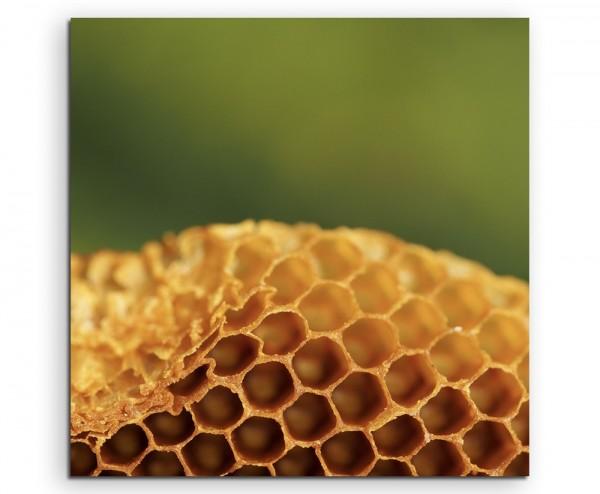 Naturfotografie – Honigwabe auf Leinwand