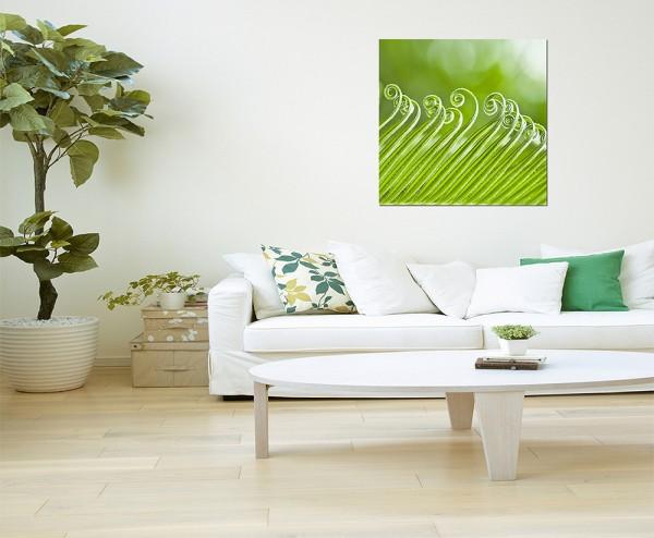 120x80cm Pflanze Locken Wellen Gewächs grün