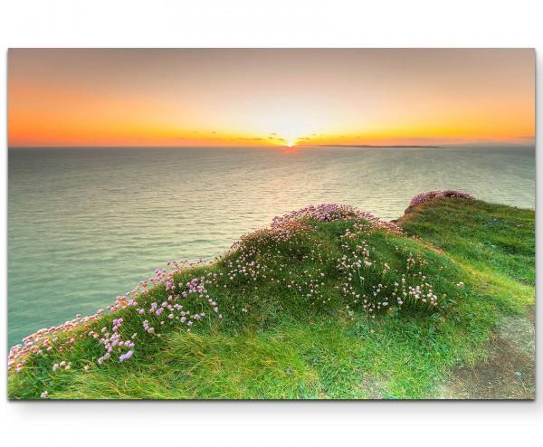 Landschaftsfotografie – Klippe mit rosa Blüten bei Sonnenuntergang - Leinwandbild