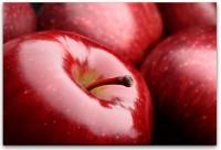 rote Äpfel Nahaufnahme Wandbild in verschiedenen Größen