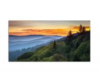 120x80cm Landschaft Wald Sonnenaufgang Nebel