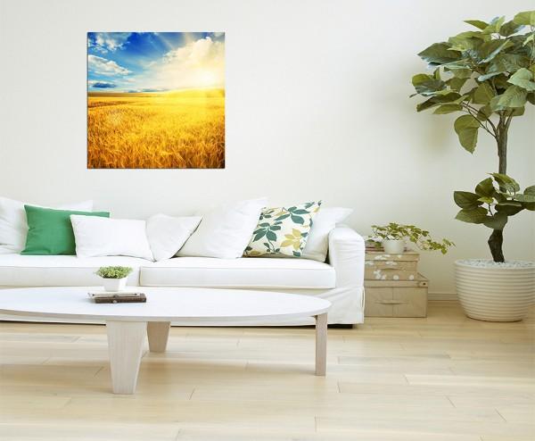 80x80cm Kornfeld Frühling Himmel Wolkenschleier Sonne