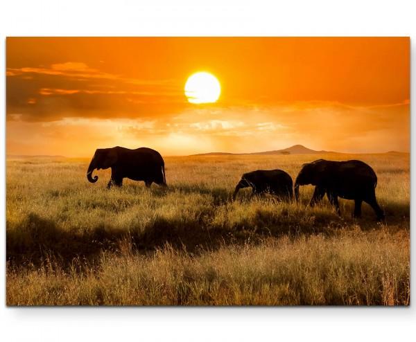 Elefantenfamilie bei Sonnenuntergang - Leinwandbild