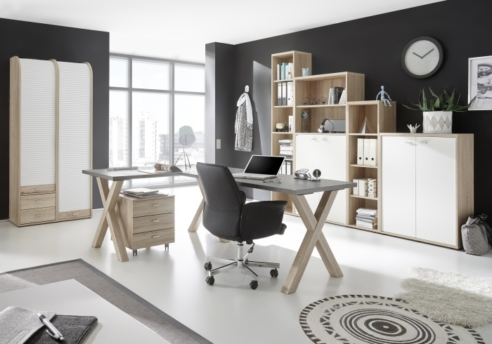 b ro mister office b ro m bel. Black Bedroom Furniture Sets. Home Design Ideas