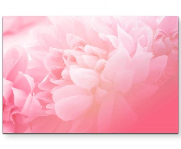 Florales Bild – soft und Rosa - Leinwandbild