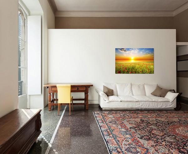 120x80cm Feld Gras Mohnblumen Himmel Sonne