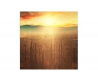 80x80cm Nationalpark Kakteen Berge Sonne Himmel