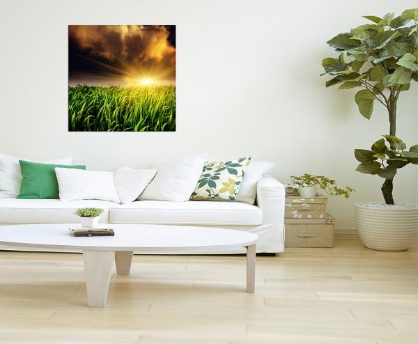 80x80cm Feld Unwetter Sonne Wolken Natur