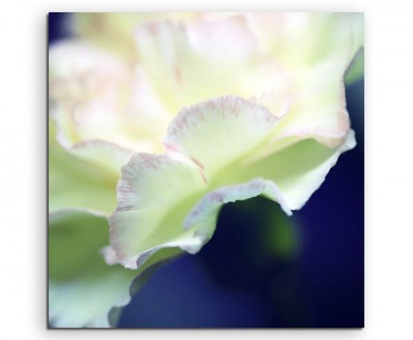 Naturfotografie – Weiße Blüte auf Leinwand exklusives Wandbild moderne Fotografie für ihre Wand in v