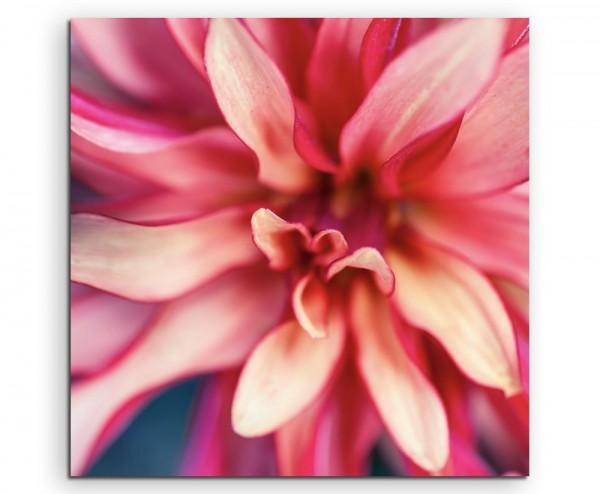 Naturfotografie – Beschnittene pink rote Blüte auf Leinwand
