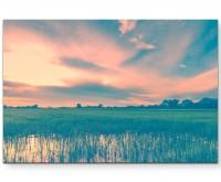 Reisfeld im Morgengrauen - Leinwandbild
