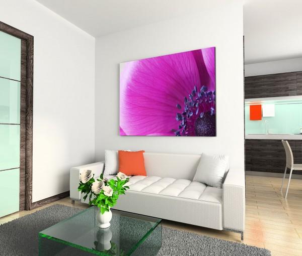 120x80cm Wandbild Anemone Blume Blüte Nahaufnahme
