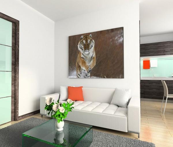 120x80cm Wandbild Sibirischer Tiger Schnee