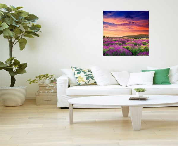 80x80cm Ungarn Lavendelfeld Sonnenuntergang