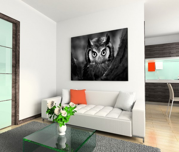120x80cm Wandbild Eule Gesicht Nahaufnahme