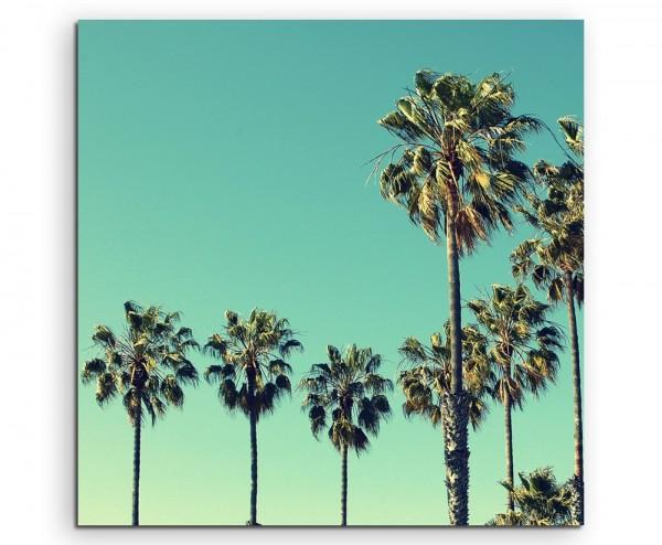 Naturfotografie – Palmen, Santa Monica Beach, USA auf Leinwand
