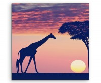 Landschaftsfotografie – Silhouette mit Giraffe und Akazie auf Leinwand
