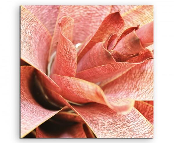 Naturfotografie – Nahaufnahme einer roten Pflanze auf Leinwand