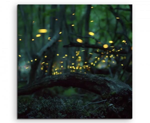 Naturfotografie – Glühwürmchen im Wald auf Leinwand exklusives Wandbild moderne Fotografie für ihre