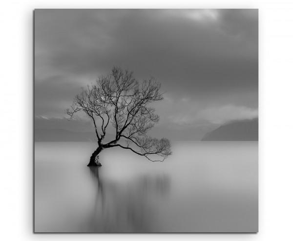 Landschaftsfotografie – Einsamer Baum am Wanaka See, Neuseeland auf Leinwand