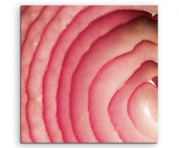 Food-Fotogradie – Aufgeschnittene rote Zwiebel auf Leinwand
