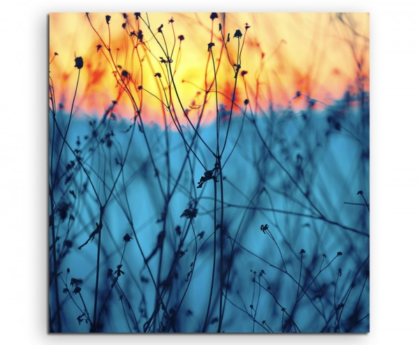 Landschaftsfotografie – Pflanzen bei Sonnenaufgang auf Leinwand