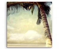 Landschaftsfotografie - Palme am Sepiastrand auf Leinwand