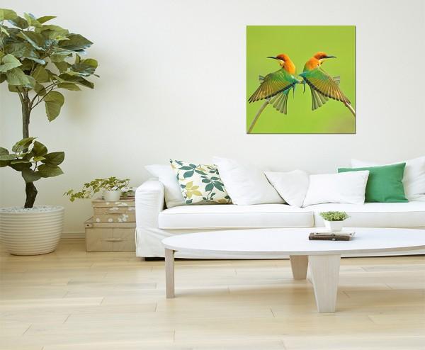 80x80cm Vögel Bienenfresser Pärchen