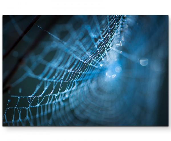 Spinnennetz am Morgen, Nahaufnahme - Leinwandbild