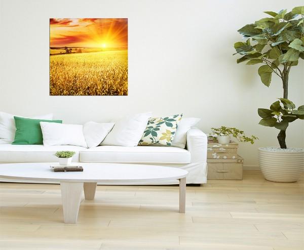 80x80cm Kornfeld Sonnenuntergang Himmel
