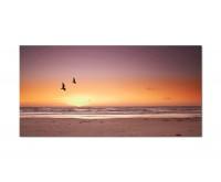 120x60cm Strand Meer Möwen Himmel Sonne