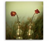 Künstlerische Fotografie – Zwei Rosen in Glasvasen auf Leinwand