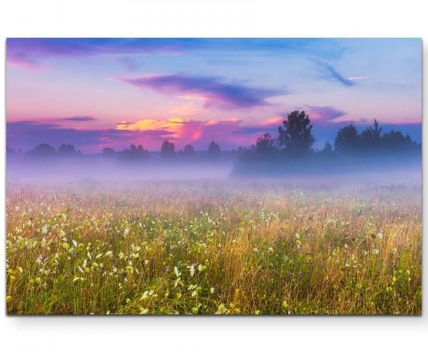 Neblige Wiese im Sommer - Leinwandbild