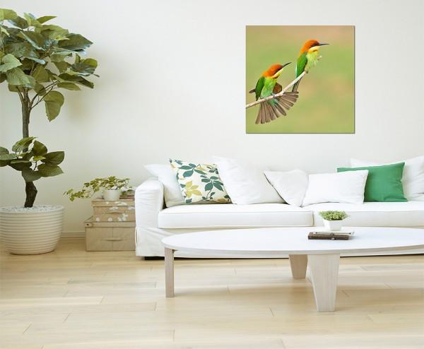 80x80cm Bienenfresser Vögel Pärchen Zweig