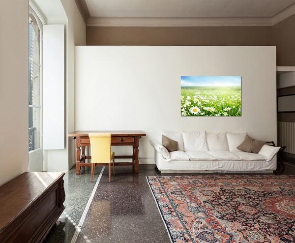 120x80cm Gänseblümchen Wiese Frühling Himmel