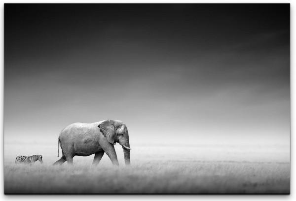 Elefanten in Afrika Wandbild in verschiedenen Größen