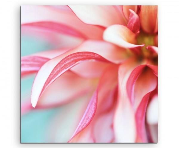Naturfotografie – Beschnittene pink rote Blüte mit grünem Hintergrund auf Leinwand