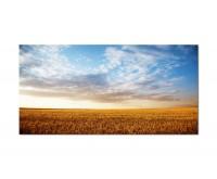 120x80cm Feld Sommerlandschaft Natur Himmel