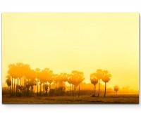 Sonnenuntergang über Palmen - Leinwandbild