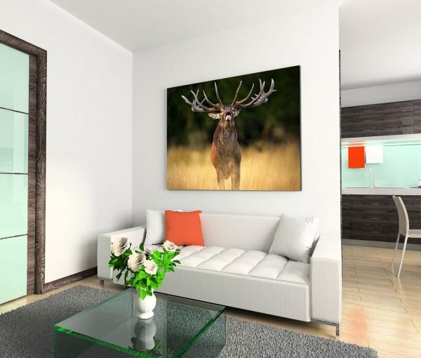 120x80cm Wandbild Rothirsch Geweih Wiese Lichtung