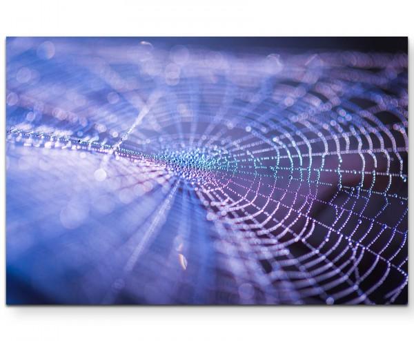 Spinnennetz mit Tautropfen, Nahaufnahme - Leinwandbild