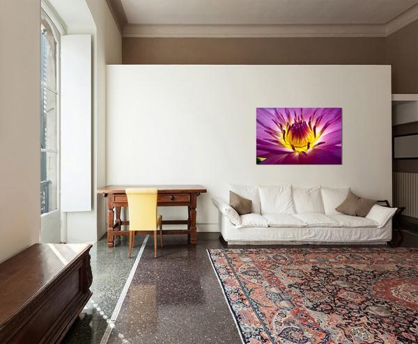 120x80cm Lotus Blüte Pflanze Nahaufnahme