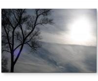 Baum, Sonne, Wolken - Leinwandbild