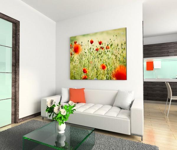 120x80cm Wandbild Wieso Mohnblumen Sommer